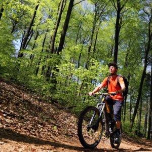 mountainbike-vergleichstestsieger
