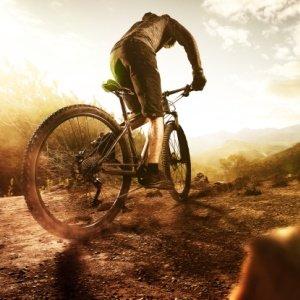 mountainbike-vergleichstest